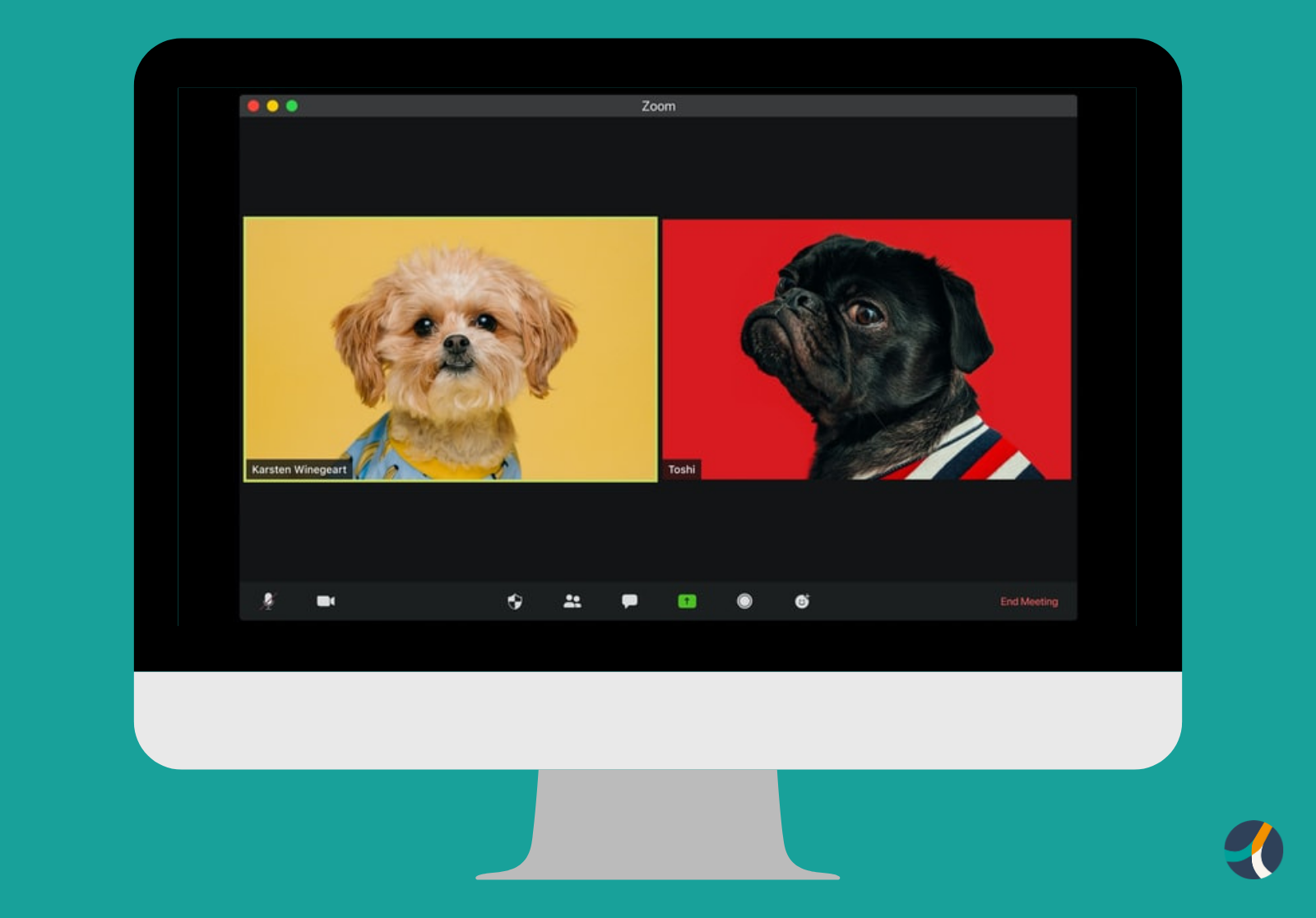 Image of two small dogs in a video call by @visuals